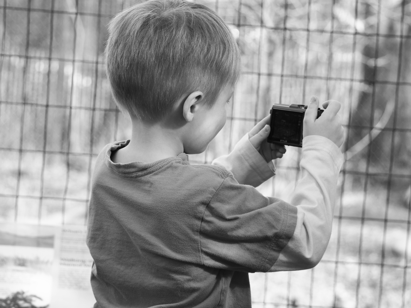 studying photography at the zoo � the dad hatter