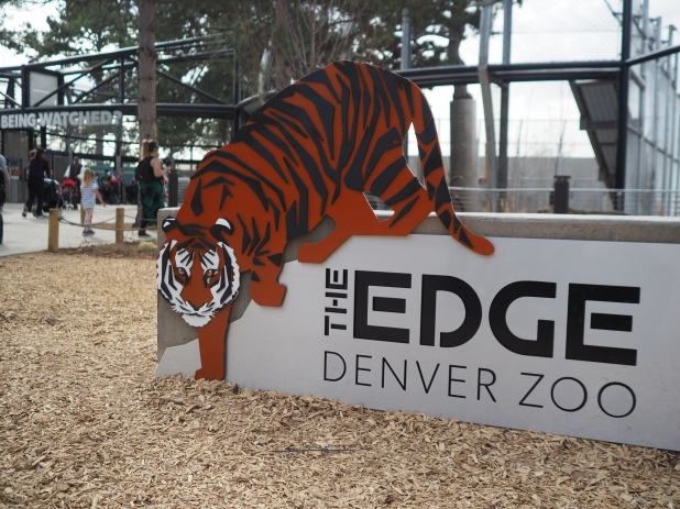The new tiger exhibit at the Denver Zoo is very cool and the kids love it. I hope to finish a new post about our experience soon!