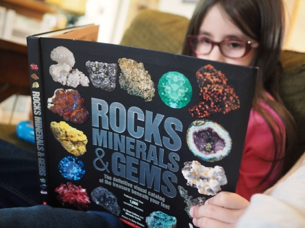 Every aspiring gemologist needs some good books to study. H loves this one.