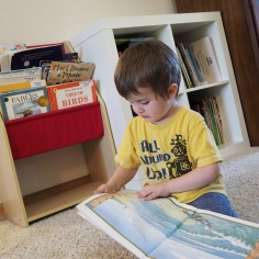 We started revamping our home library spaces, ut he couldn' wait for us to finish. He had to have books!
