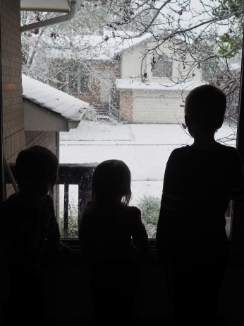 May in Colorado usually has one good snowfall, and this year was no exception. These three simply watched the snow fall for the better part of an hour.