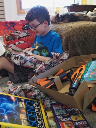 Books, Nerf weaponry, and LEGOs. Just about everything he could have wished for.