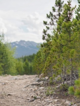 Comanche Peak Wilderness 1.5