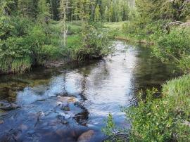Comanche Peak Wilderness 2.2