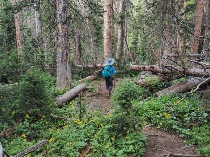 Comanche Peak Wilderness 2.7