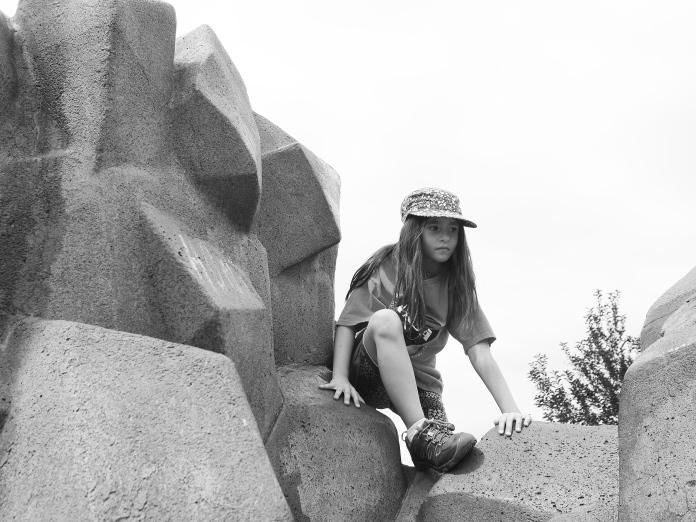 Climbing Monkey 3