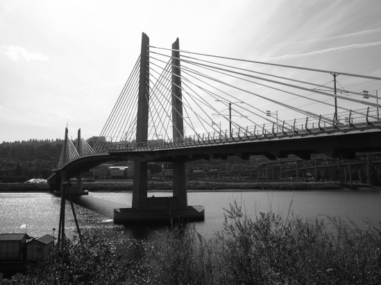 This bridge is new to me, since it was built since the last time I was in Portland. It's also really cool.