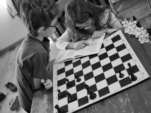 They were having a great time with a chess tactics book this morning.